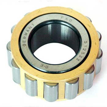 Full complement cylindrical roller bearing RSL18 2236 without out rings